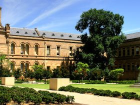 بورسیه دانشگاه آدلاید استرالیا