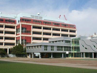 بورسیه دکتری در استرالیا