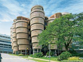 دانشگاه برتر آسیا