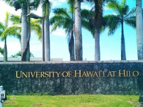 بورسیه دانشگاه هاوایی امریکا