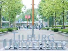 بورسیه دانشگاه تیلبورگ هلند