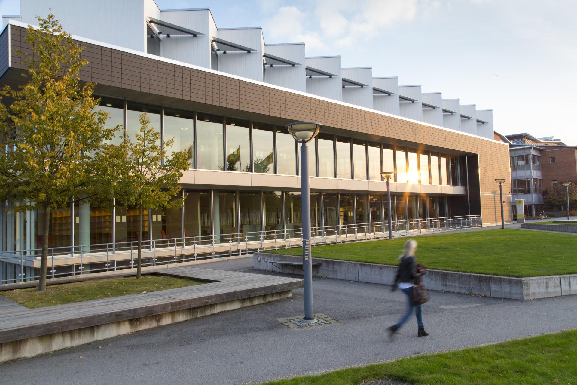 بورسیه دانشگاه لینه سوئد