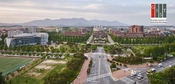 کارآموزی کره جنوبی